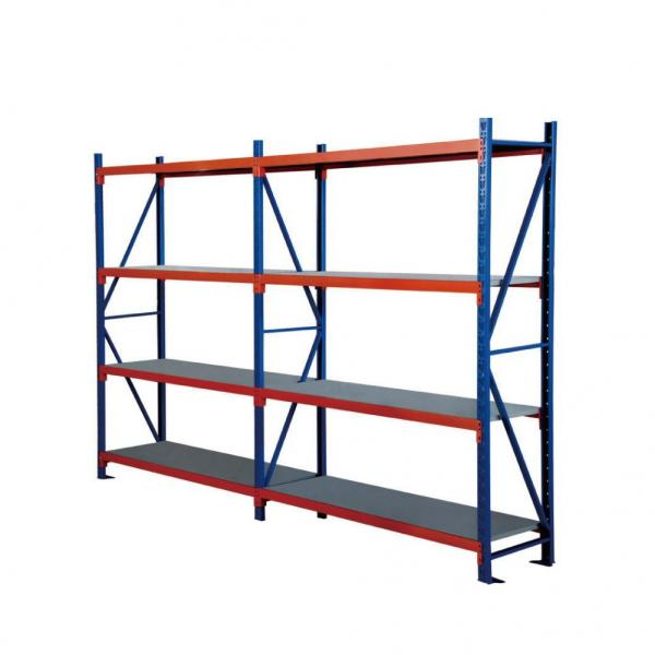 Gym Equipment Steel Storage Dumbbell Rack for Home and Commercial Use